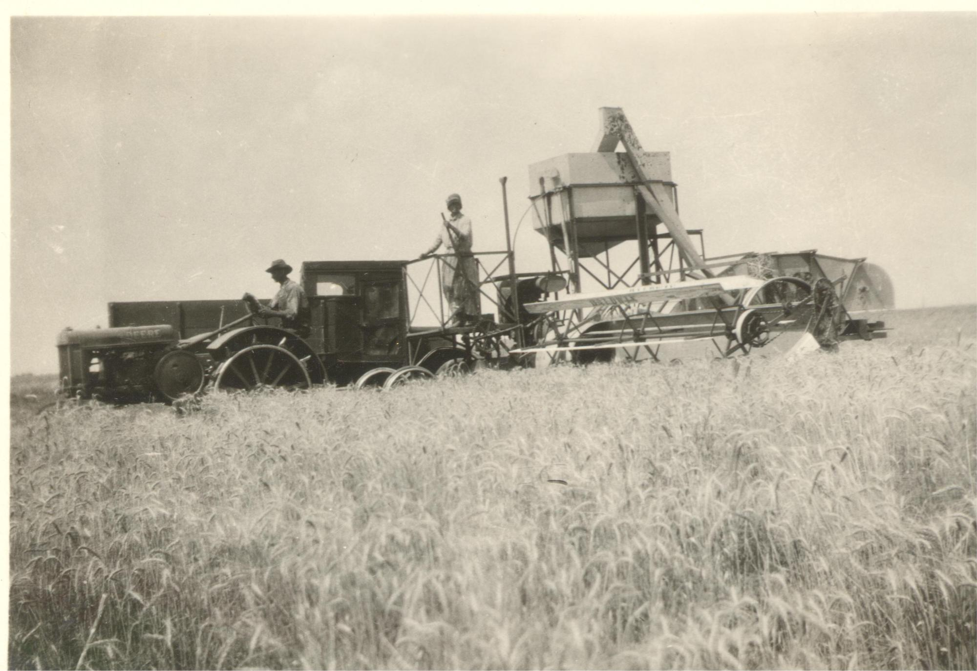 Caroline and Will Henderson harvesting together, 1930