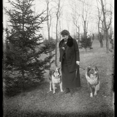 Miss Woolley and dogs