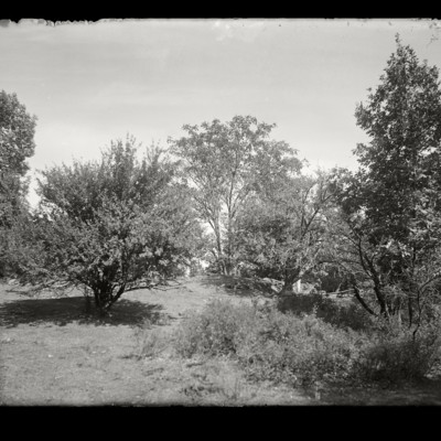 Mary Lyon's Birthplace Buckland