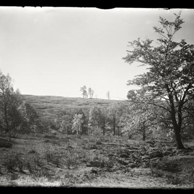 Buckland Scenery