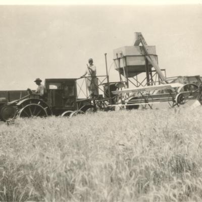 Wheat_Harvest_1930_WEH_CAHenderson.jpg